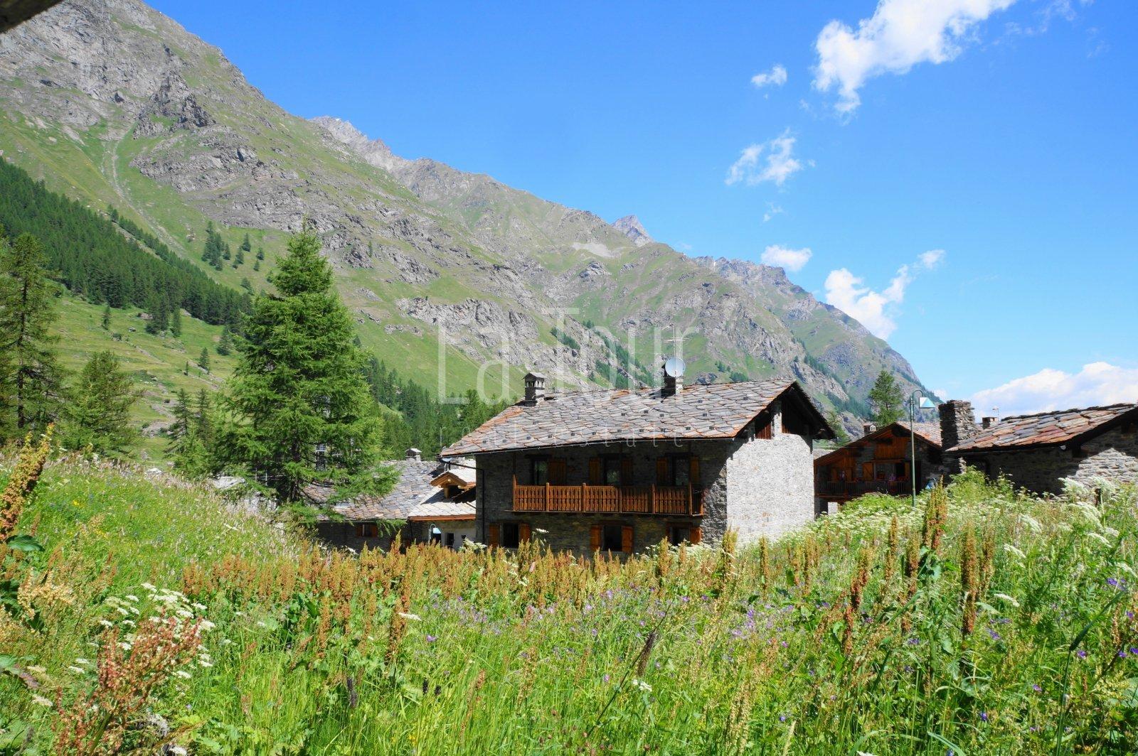 il villaggio visto da monte