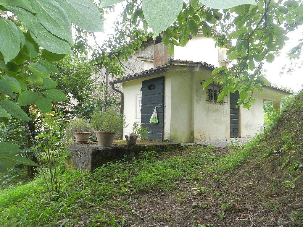 Casa colonica Lucca S. Macario IA03369 img 9