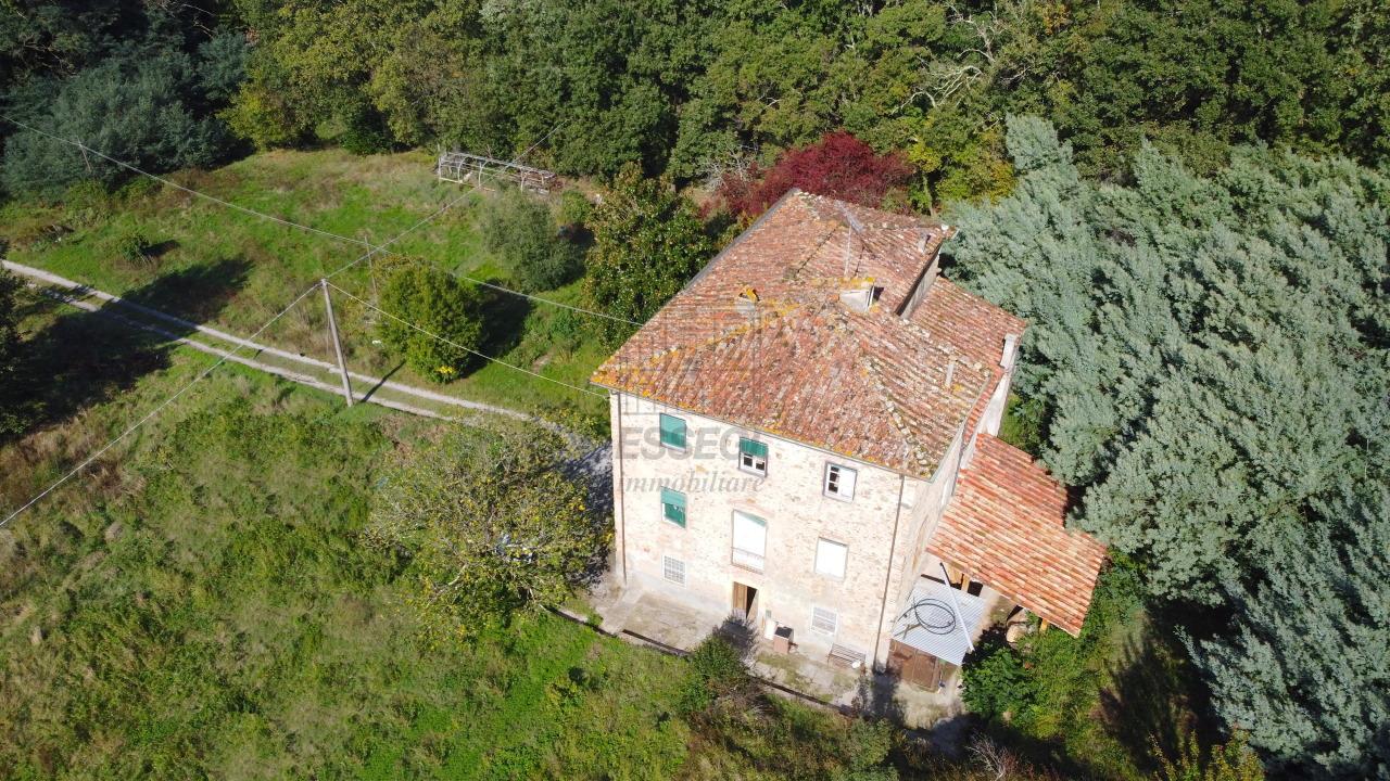 Casa colonica Lucca S. Maria del Giudice IA01228 img 7
