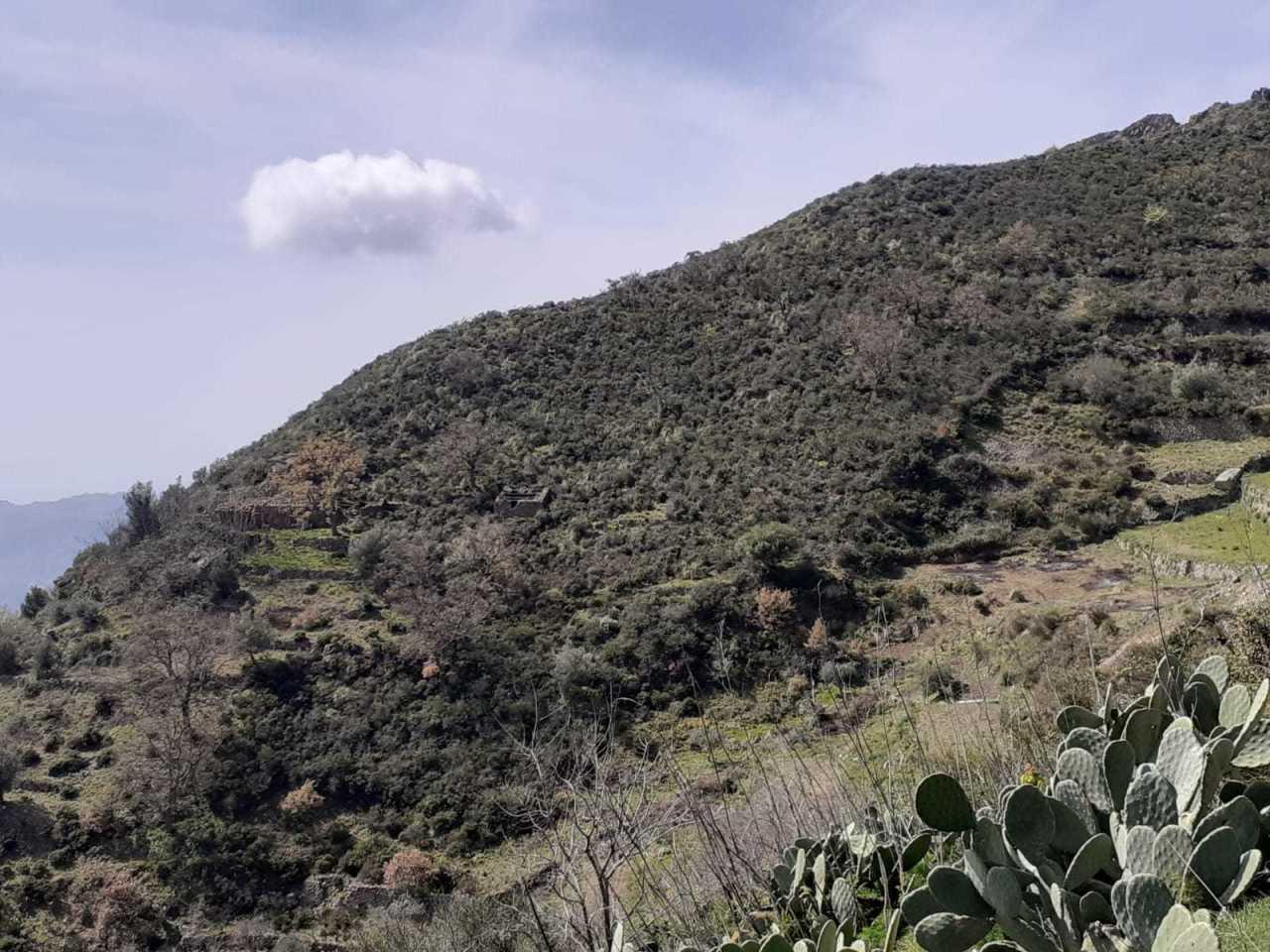 Terreno Agricolo in vendita a Bova, 1 locali, prezzo € 32.000   CambioCasa.it