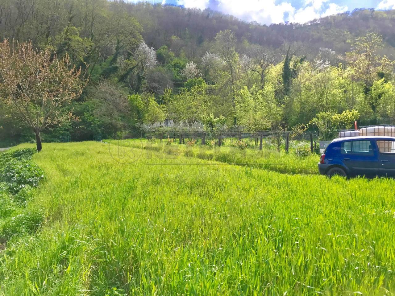 Agricolo - Seminativo a Castel San Giorgio Rif. 8773774