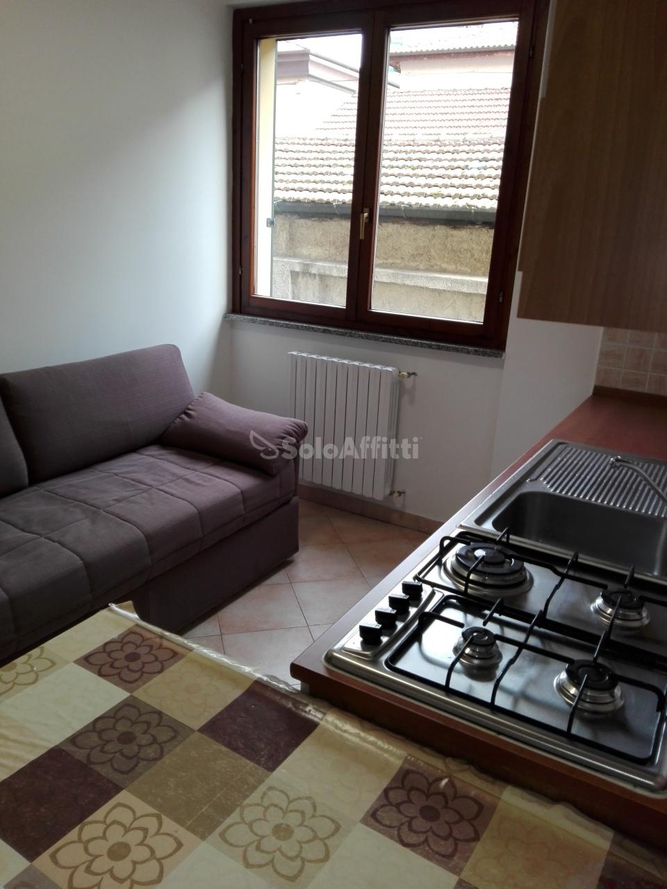 Bilocale in buone condizioni arredato in affitto Rif. 10430259