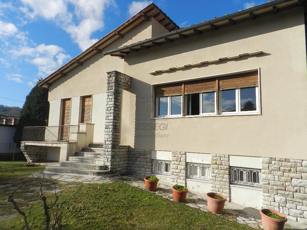 IA03254 Lucca Saltocchio