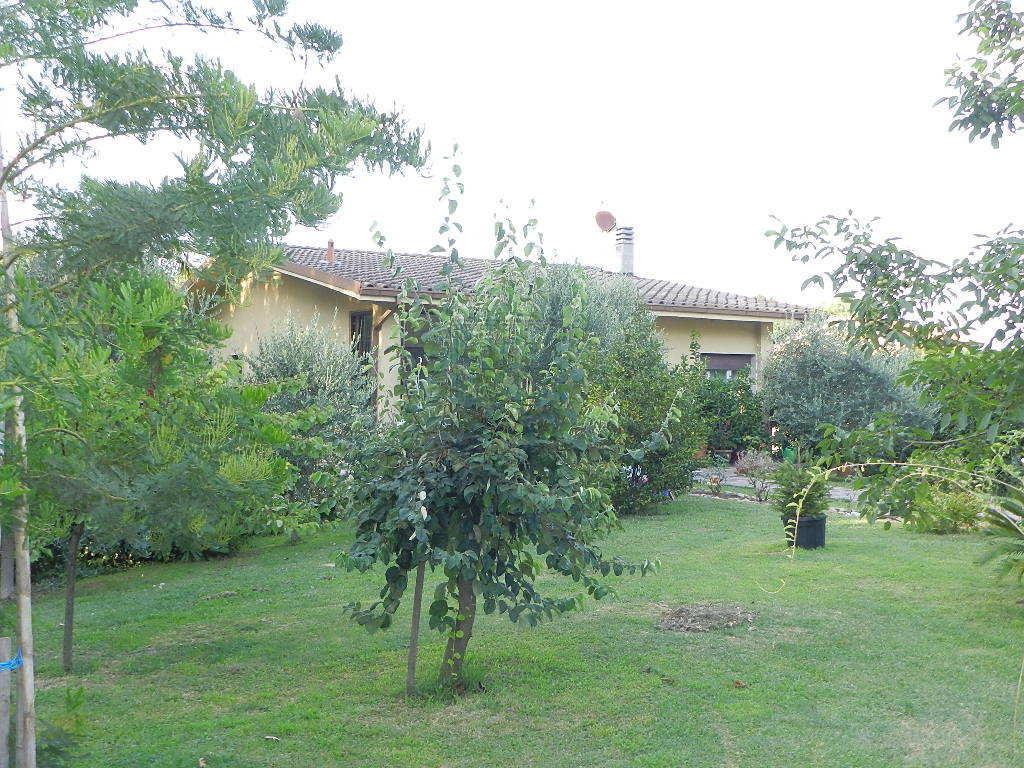 Villa singola Capannori Massa Macinaia IA03465 img 6