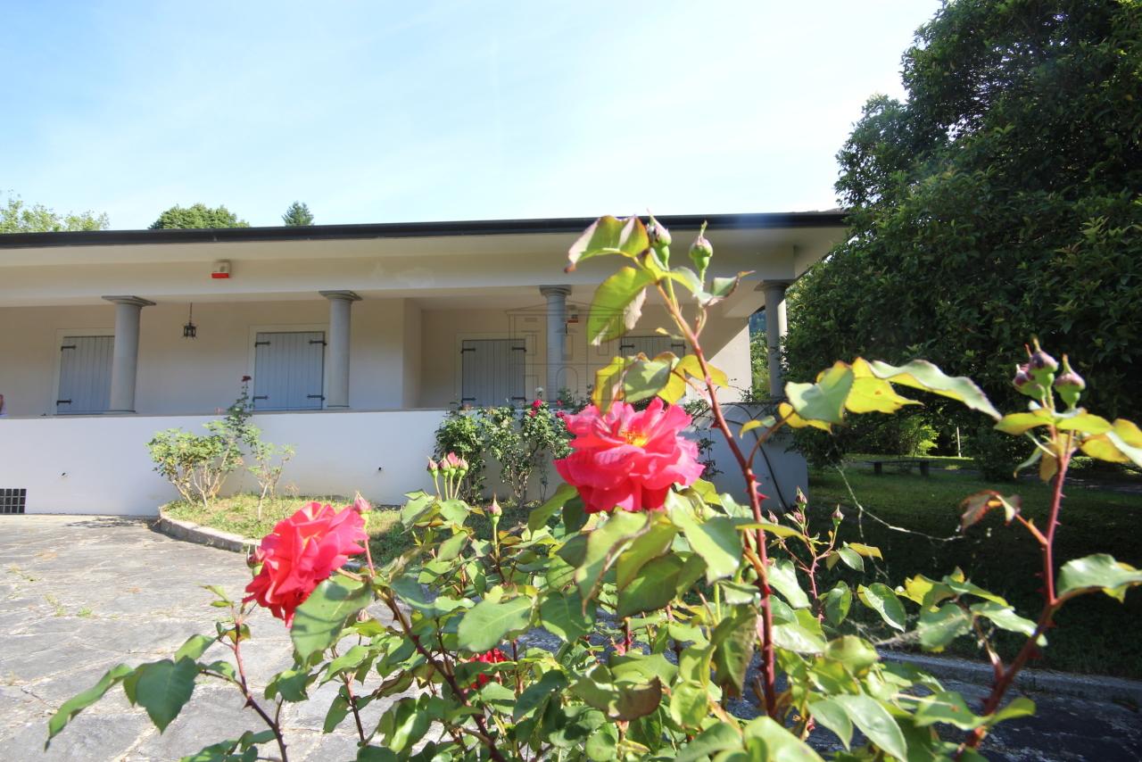 Villa singola Camaiore IA00988 img 6