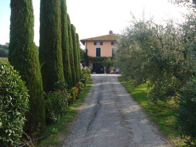 Casa colonica Montecarlo Lucca IA02353 img 2