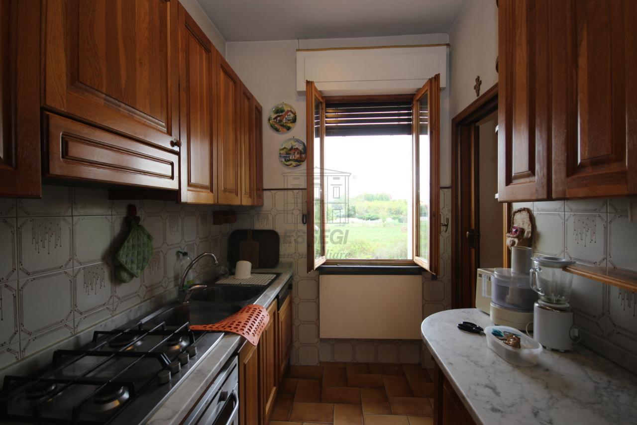 Villa divisa in due unità Lucca S. Cassiano a Vico IA03434 img 14