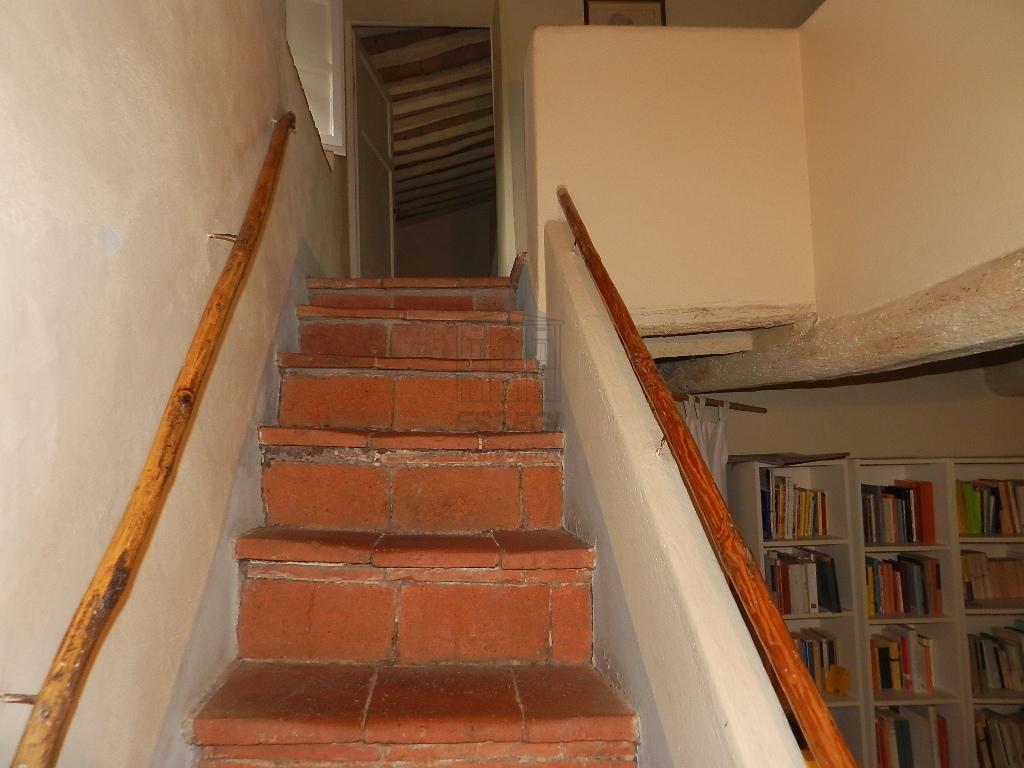 Casa colonica Lucca S. Macario IA03369 img 22