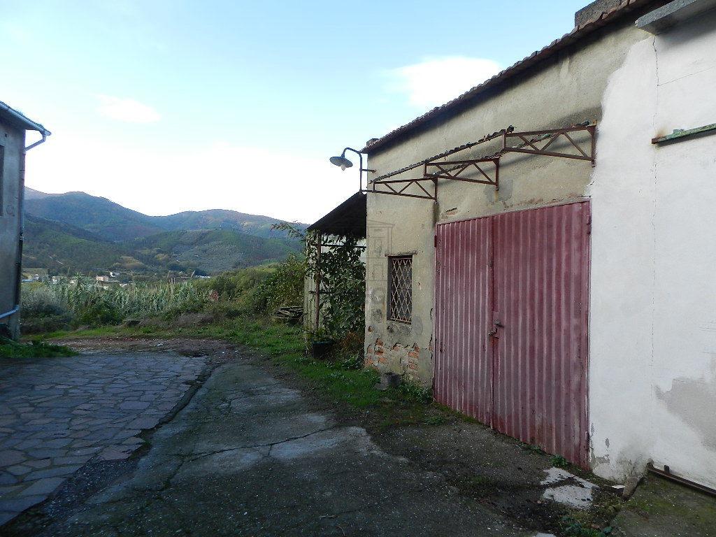 Terratetto Capannori Colognora di Compito IA03002 img 37