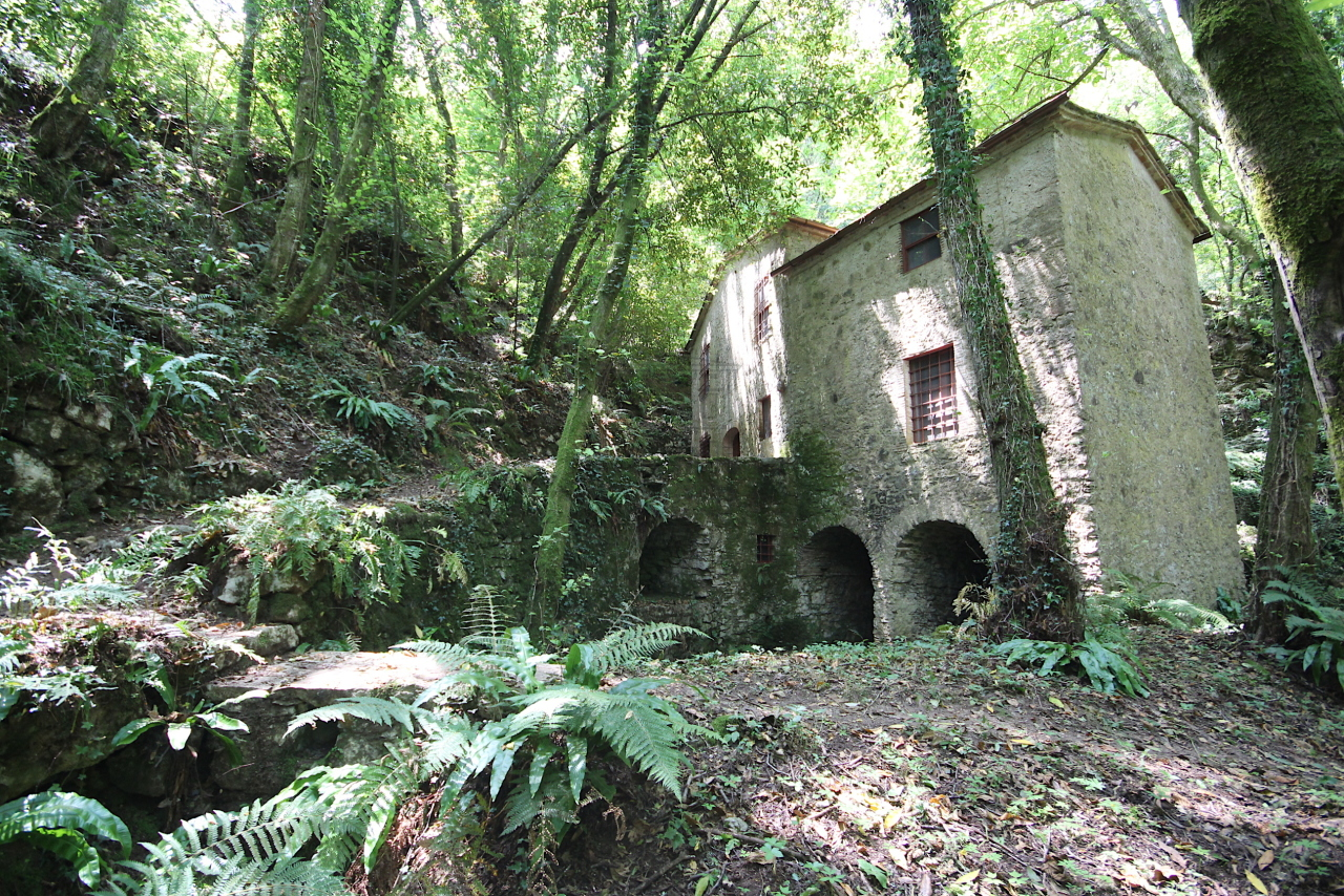 Casa colonica Camaiore IA03348-B img 15