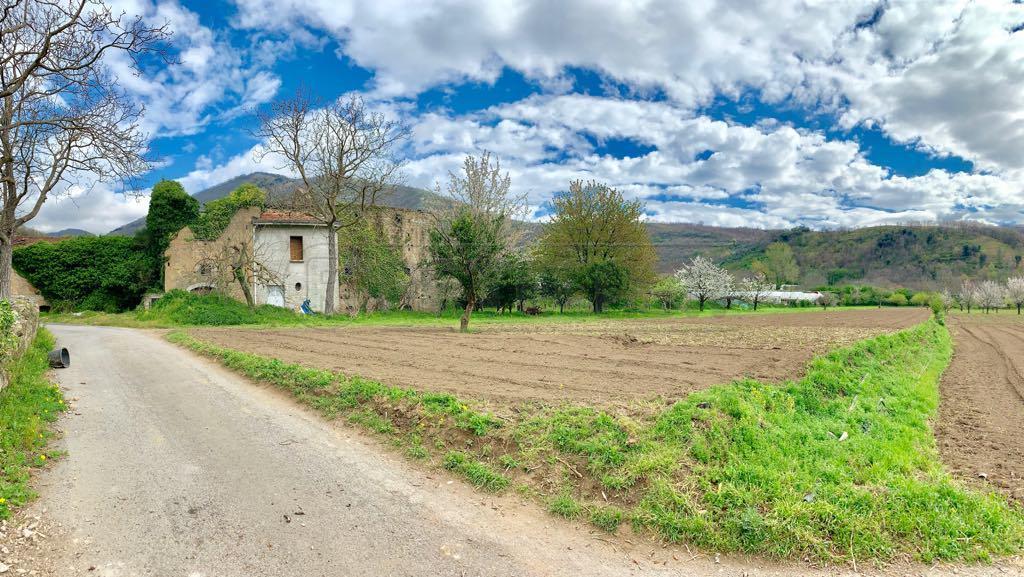 Agricolo - Frutteto a Mercato San Severino Rif. 9997994
