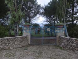 Terreno agricolo in Vendita a Melendugno, zona TORRE DELL'ORSO,