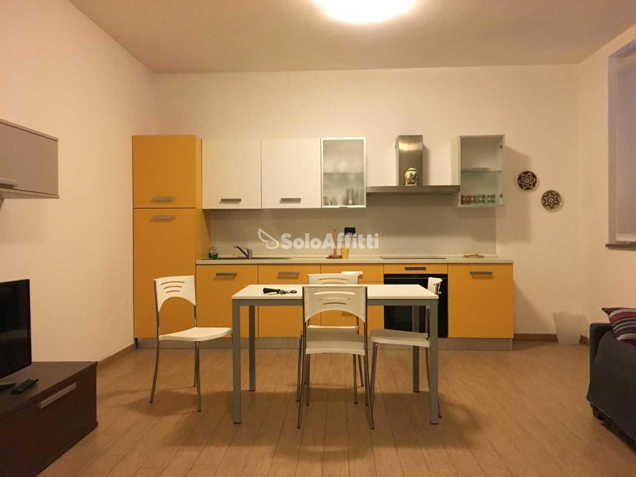 Bilocale ristrutturato arredato in affitto Rif. 10530639