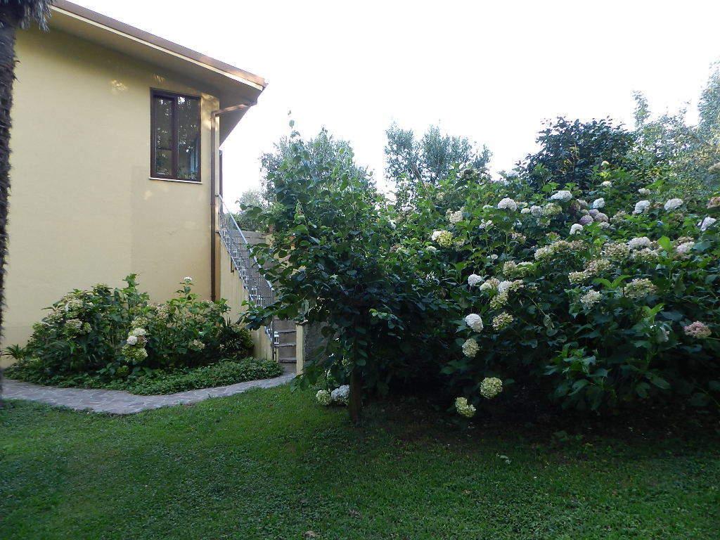 Villa singola Capannori Massa Macinaia IA03465 img 8