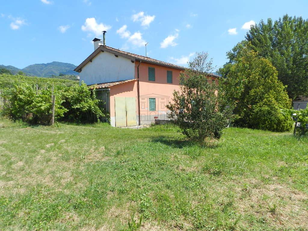 Casa colonica Lucca IA03158 img 7