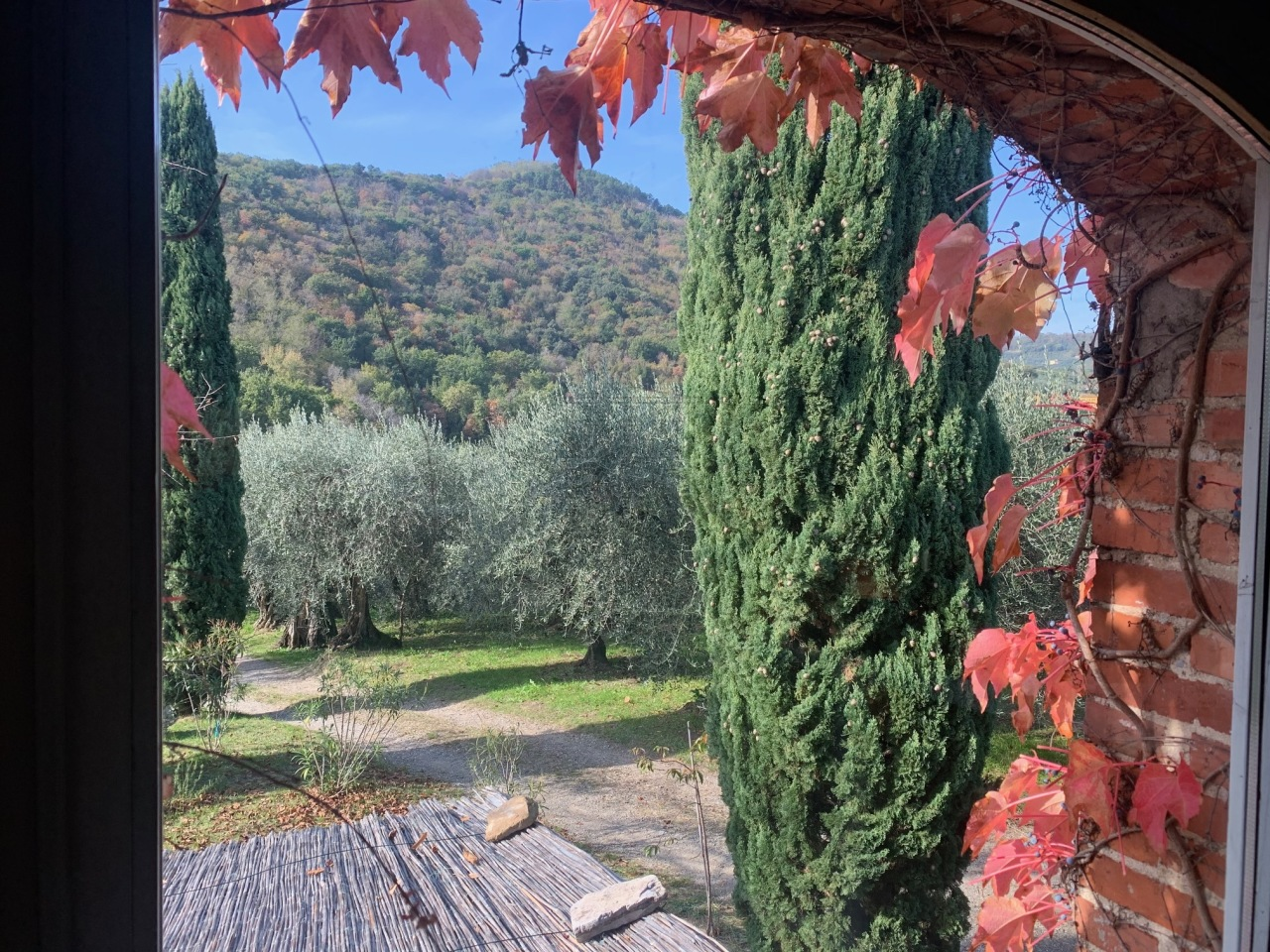 Casa colonica Lucca Monte S. Quirico IA03418 img 5