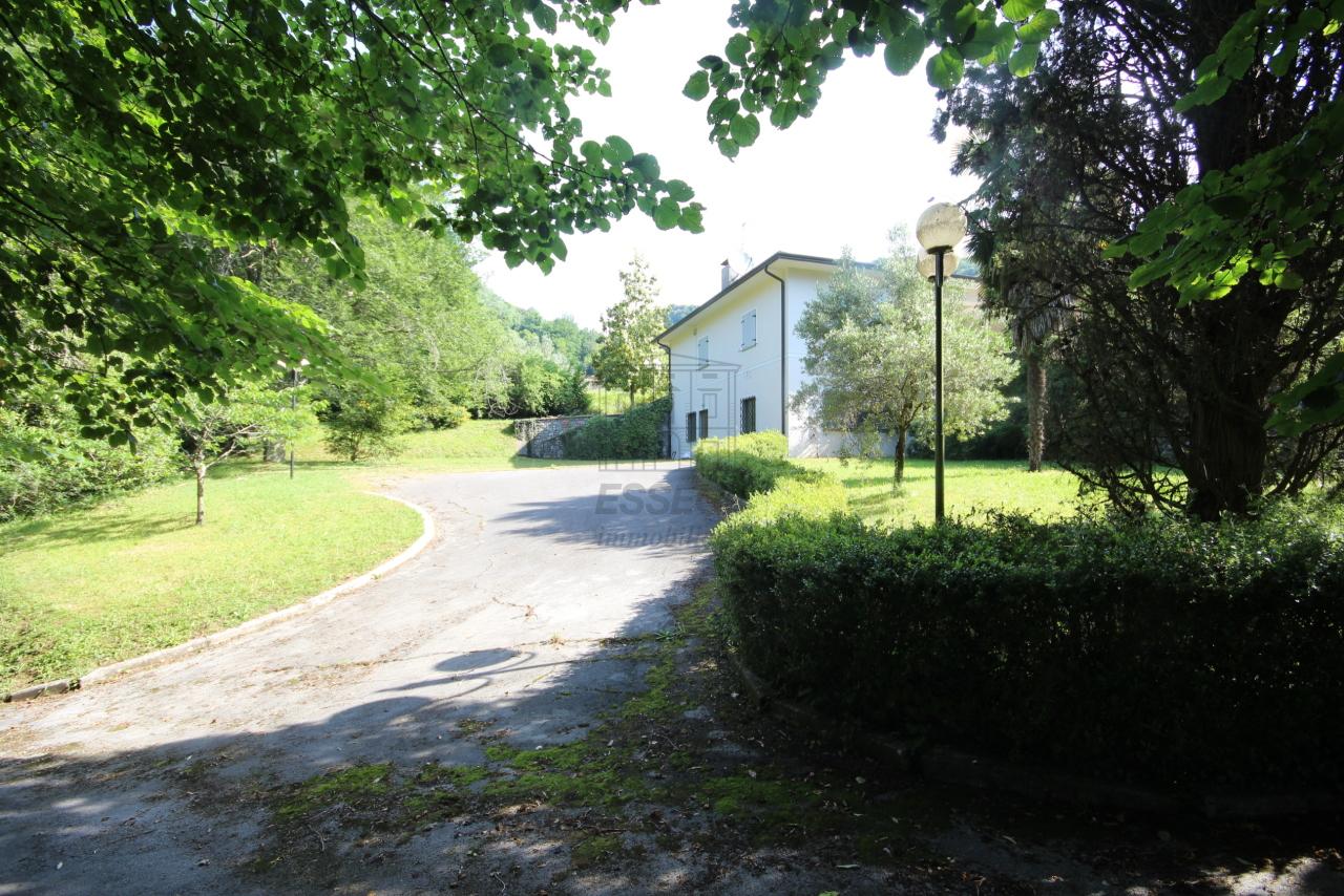 Villa singola Camaiore IA00988 img 3