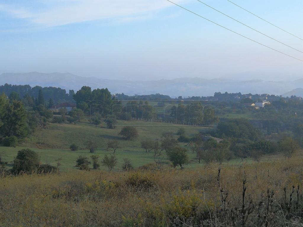 Agricolo - Seminativo a Caltanissetta Rif. 8131813
