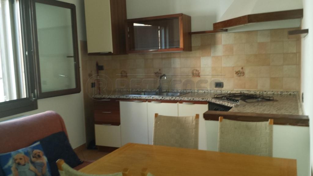 Bilocale in buone condizioni arredato in affitto Rif. 9566012