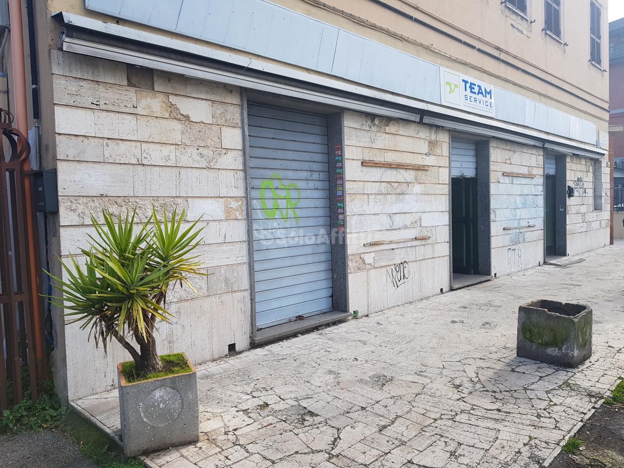 Fondo/negozio - 3 vetrine/luci a Tor Vergata-Romanina-Morena , Roma Rif. 11577388