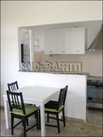 Bilocale in ottime condizioni arredato in affitto Rif. 10525284