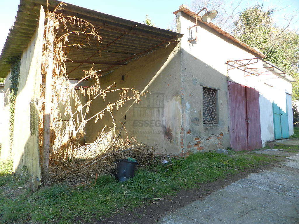 Terratetto Capannori Colognora di Compito IA03002 img 36