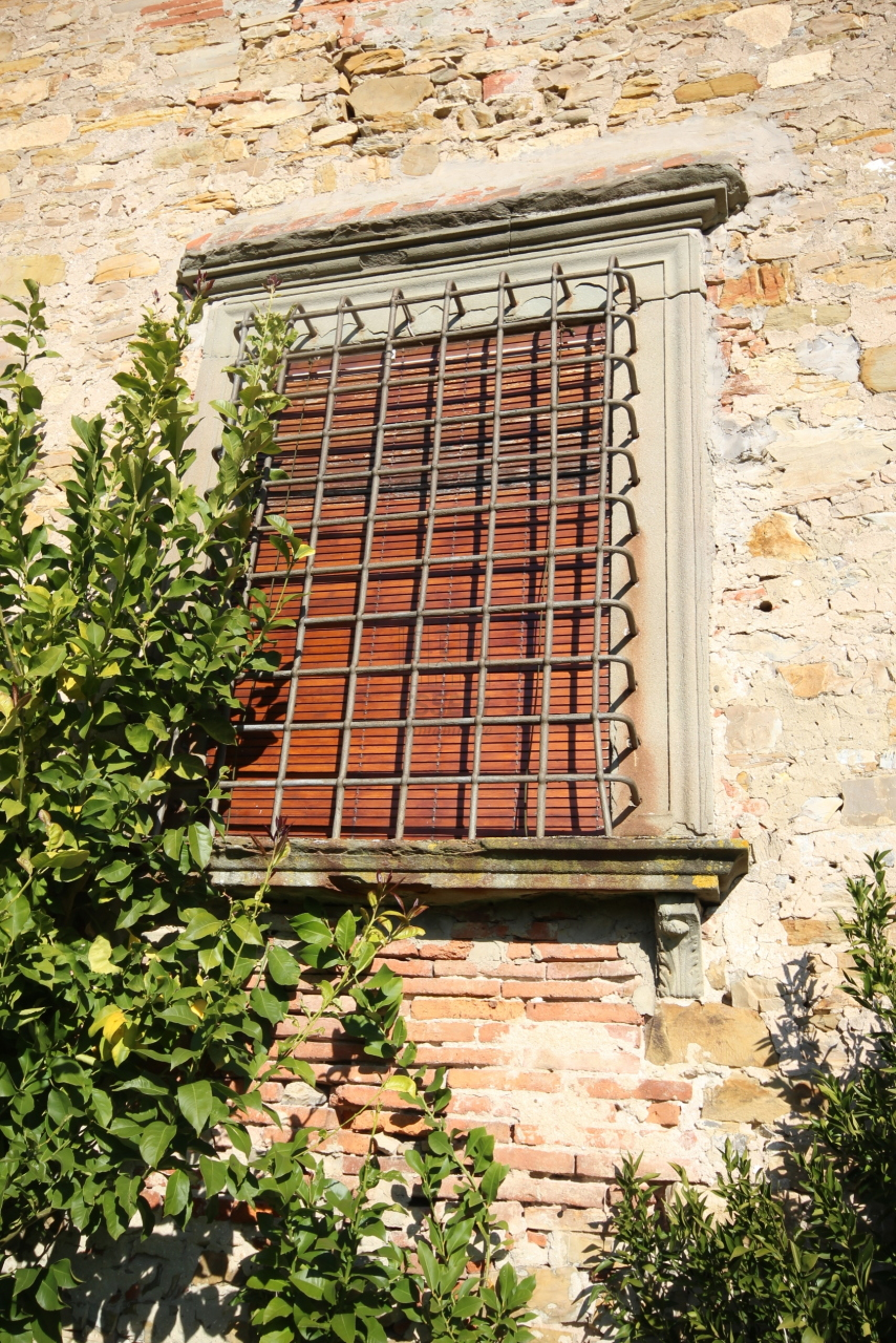 Casa colonica Lucca Cappella IA00223 img 20