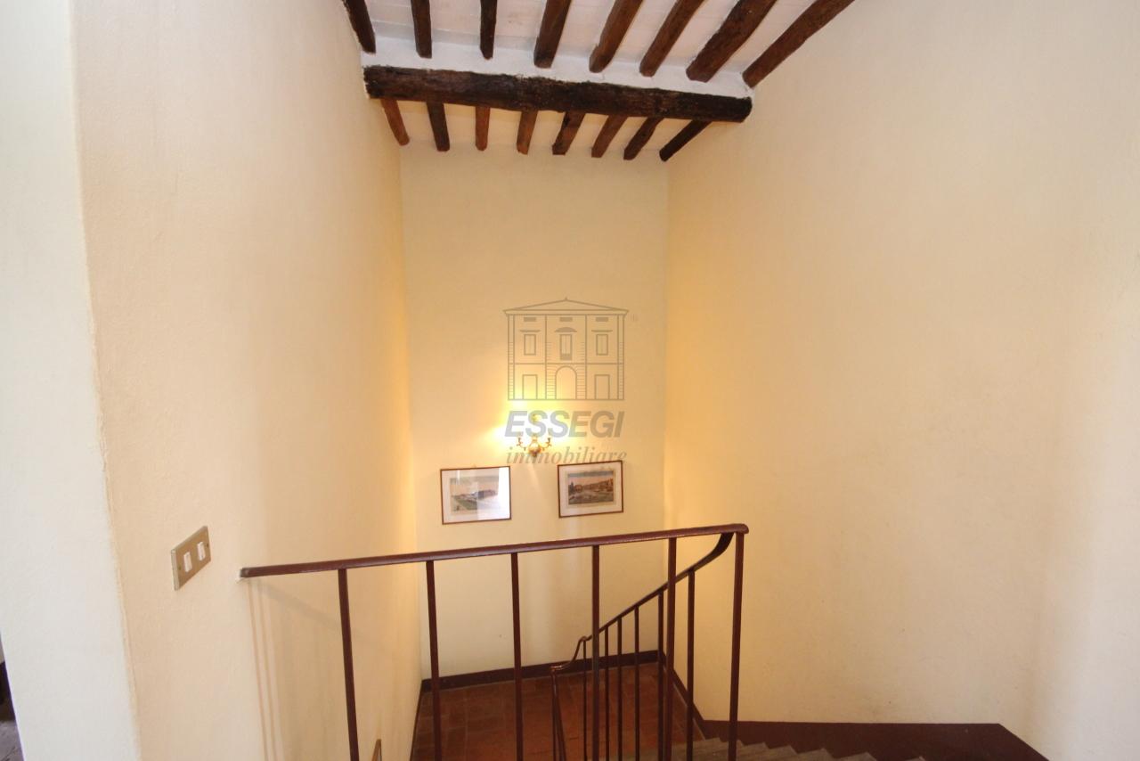 Casa colonica Capannori IA03394 img 13