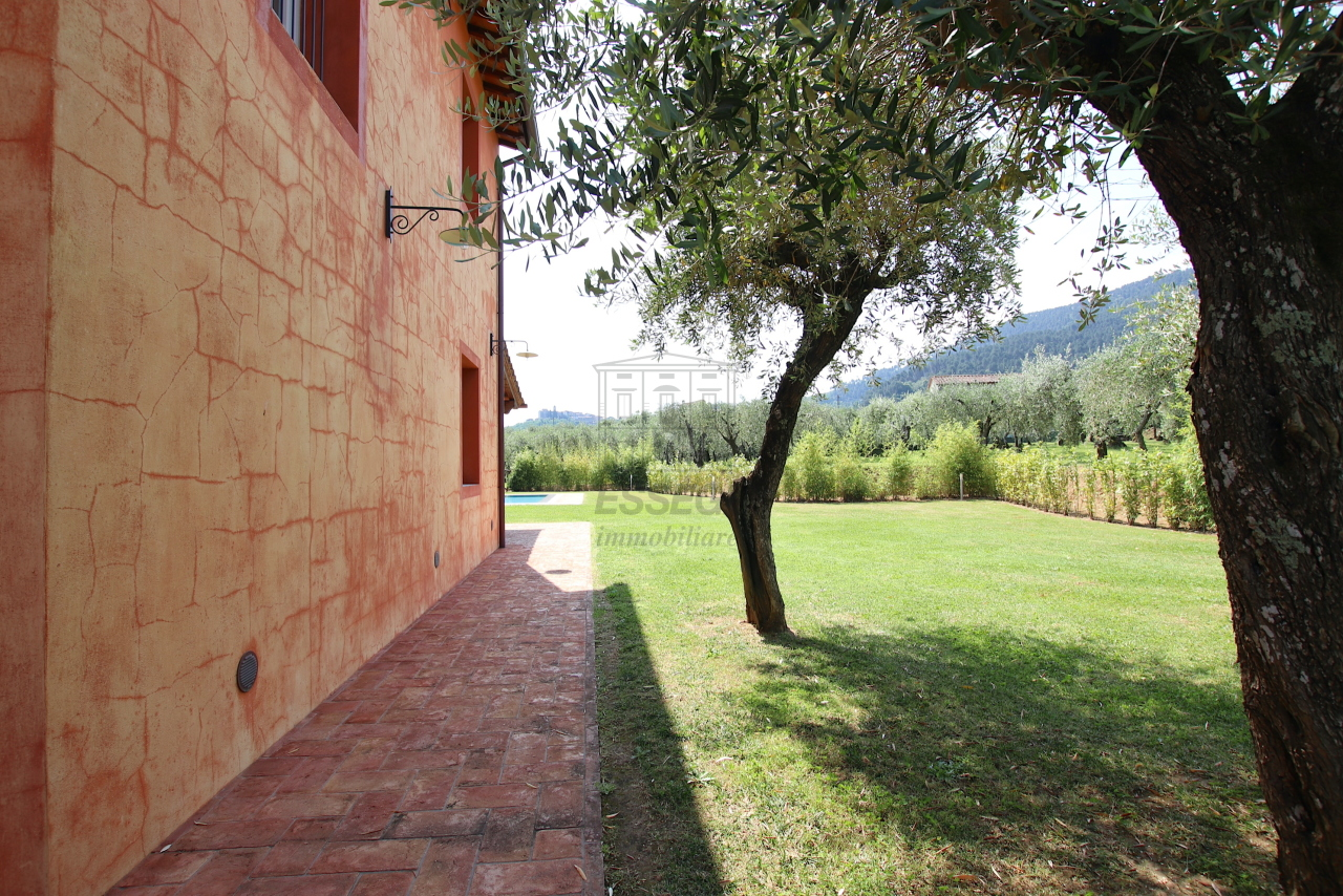 Villa singola Capannori IA01790 img 76