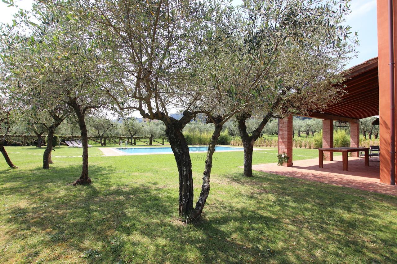 Villa singola Capannori IA01790 img 70