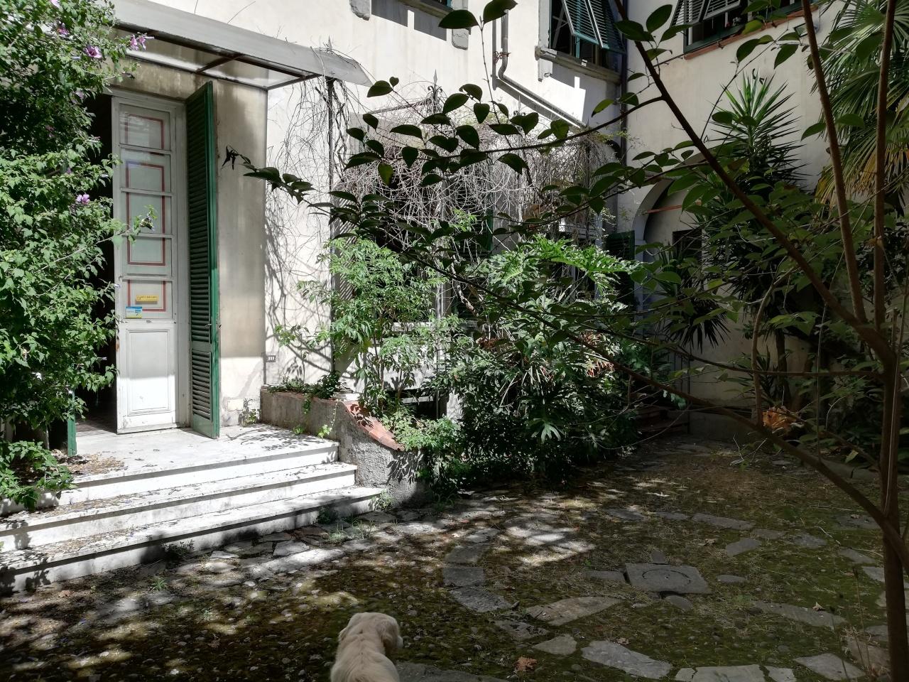 IA00538 Lucca Centro storico