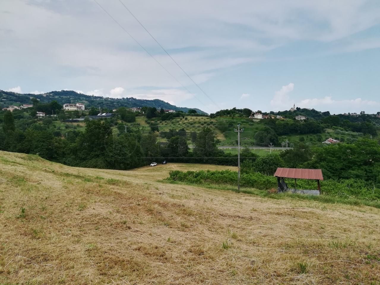 Agricolo - Prato a Molvena Rif. 10570603