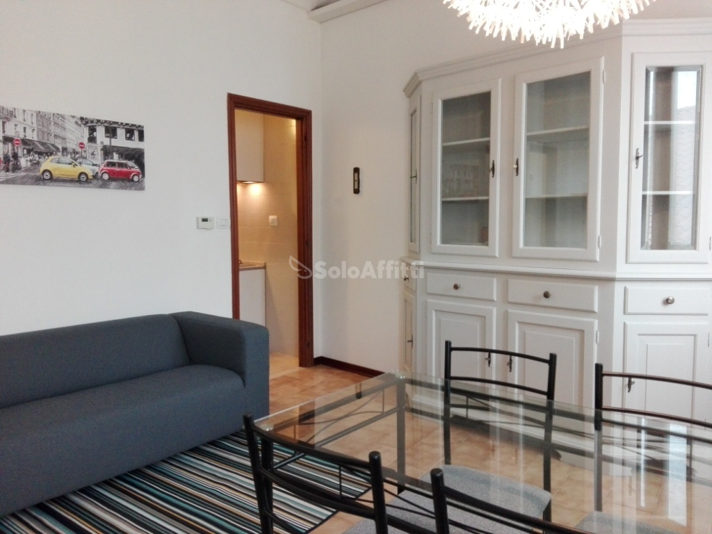 Quadrilocale ristrutturato arredato in affitto Rif. 8920950