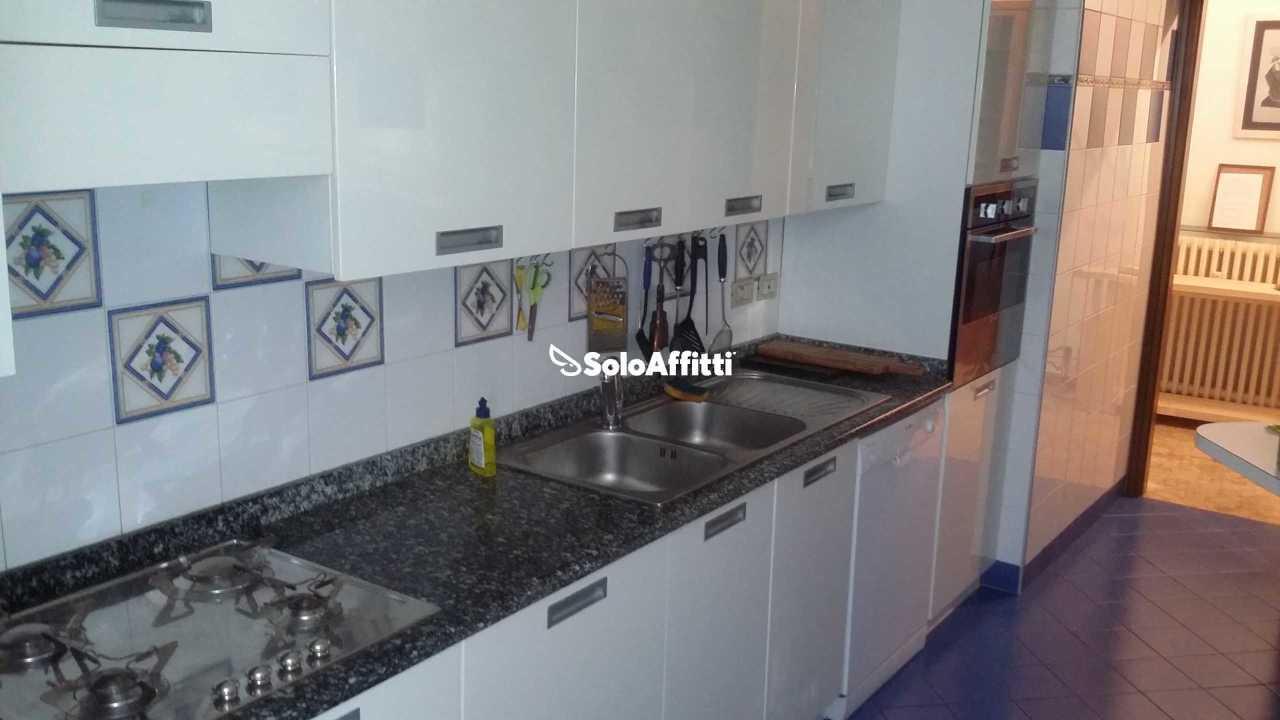 Appartamento ristrutturato arredato in affitto Rif. 9588835