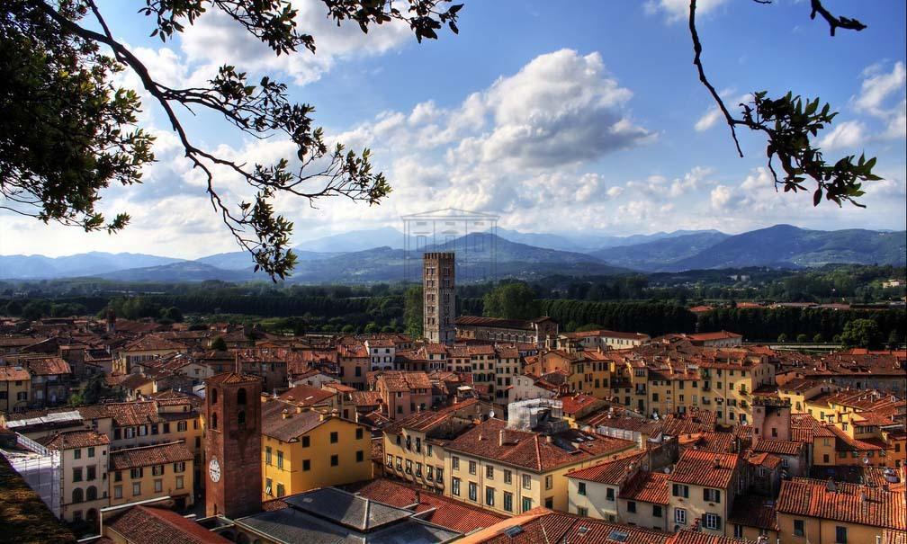 fondo commerciale Lucca Centro storico IA01424-1 img 2