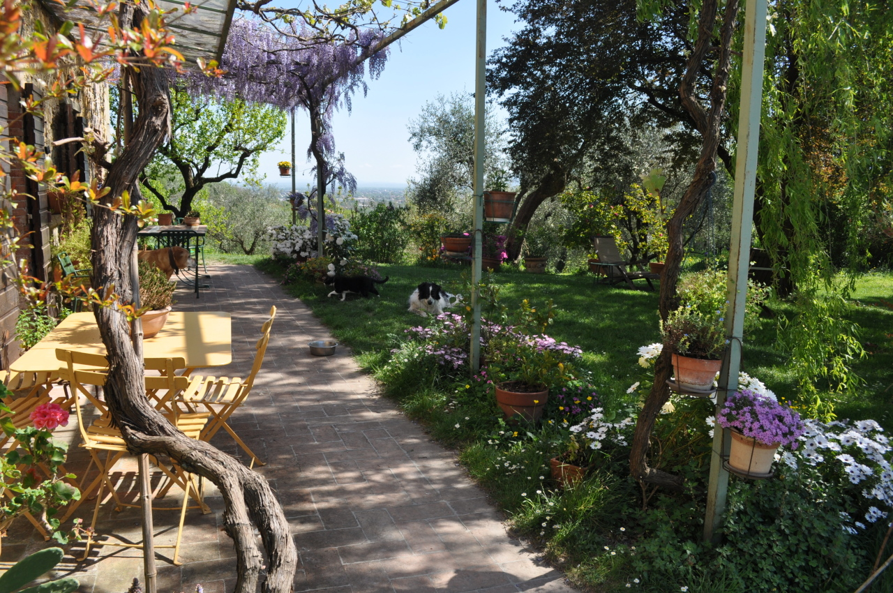 Casa colonica Lucca S. Michele di Moriano IA03149 - b img 28