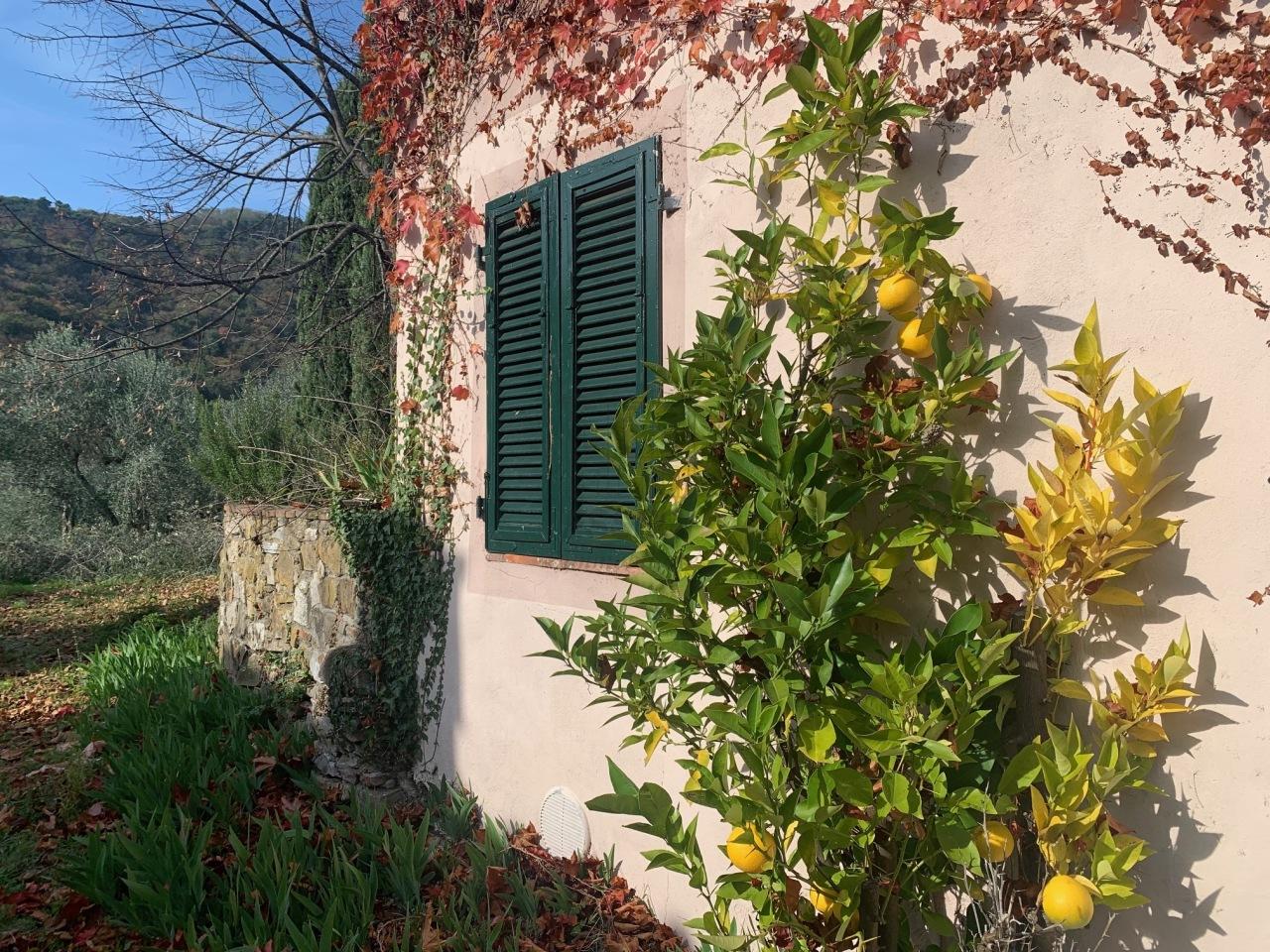 Casa colonica Lucca Monte S. Quirico IA03418 img 2