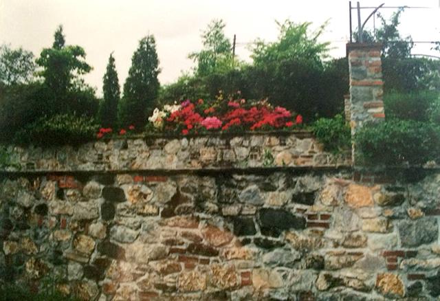 Villa singola Piazza al Serchio IA00440 img 22