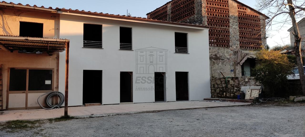 IA01429 Lucca Fagnano