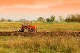 Terreno Agricolo in vendita a Ortonovo, 1 locali, prezzo € 65.000   PortaleAgenzieImmobiliari.it