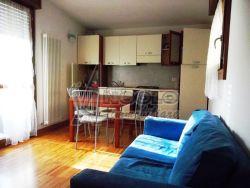 Trilocale in Affitto a Rovigo, zona CENTRO-QUARTIERI , 350€, 55 m², arredato