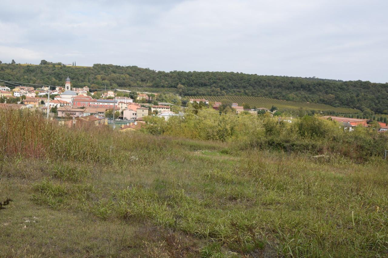 Terreno Edificabile Residenziale in vendita a Alonte, 1 locali, Trattative riservate | CambioCasa.it