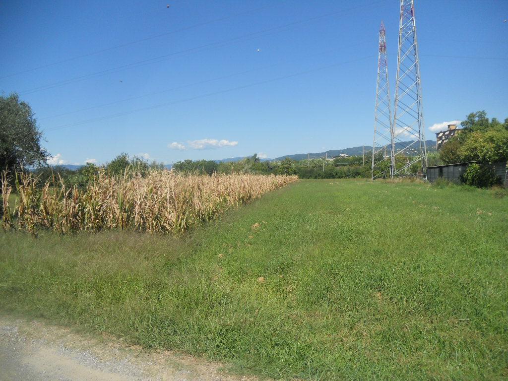 Agricolo - Seminativo a Castelnuovo Magra