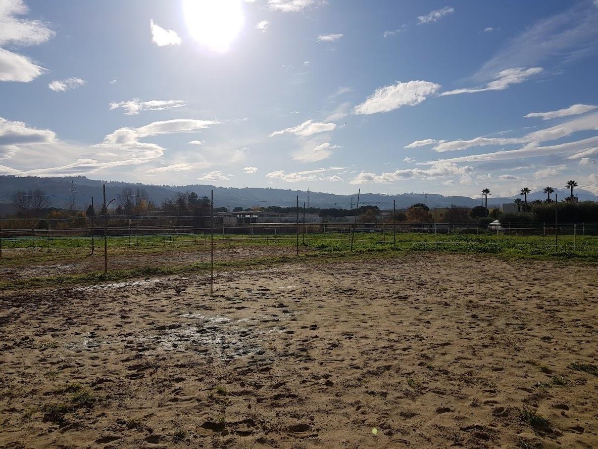 Terreno Edificabile Comm.le/Ind.le in vendita a Monteprandone, 1 locali, prezzo € 350.000 | PortaleAgenzieImmobiliari.it