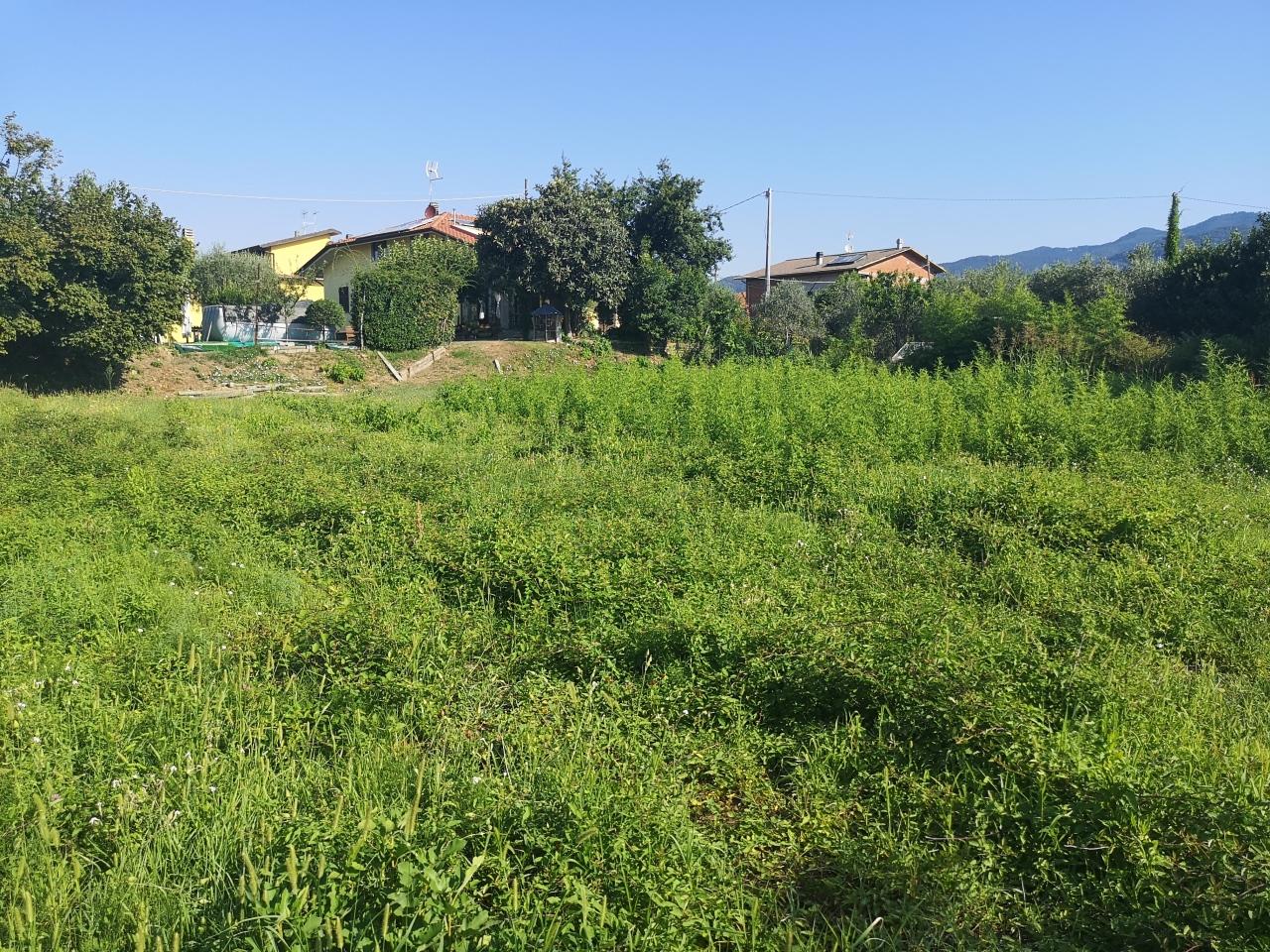 Terreno agricolo in vendita a Luni (SP)