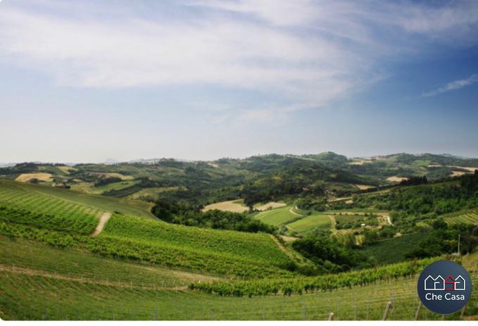 Agricolo - Frutteto a Carpineta, Cesena Rif. 10331643