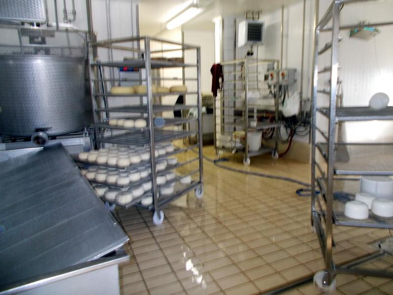Azienda Agricola in vendita a Maltignano, 1 locali, prezzo € 370.000 | CambioCasa.it