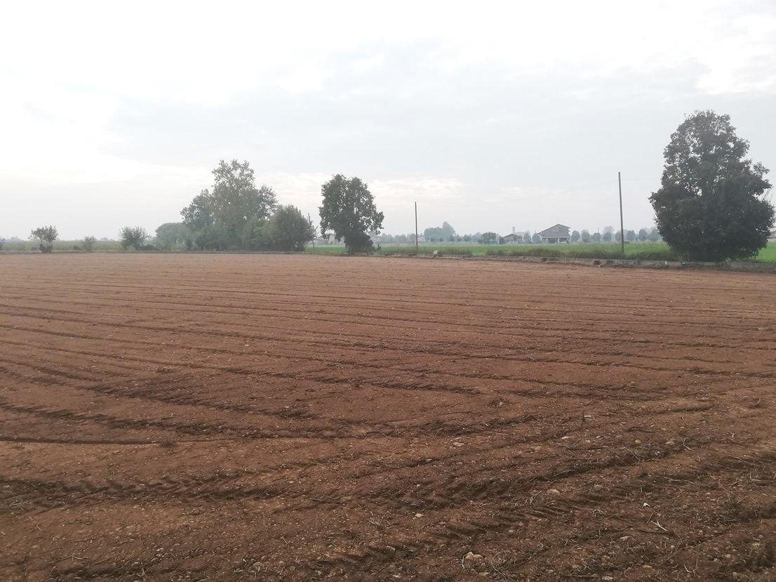 Terreno Agricolo in vendita a Chiari, 9999 locali, prezzo € 150.000 | CambioCasa.it