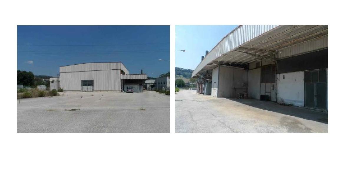 Capannone / Fondo a Campofilone Rif. 12393469